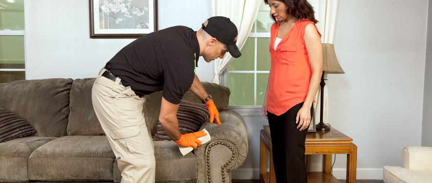 Beaufort, SC carpet upholstery cleaning